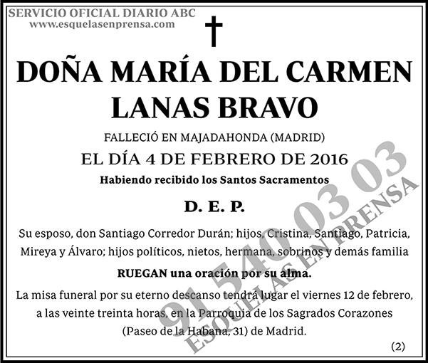 María del Carmen Lanas Bravo